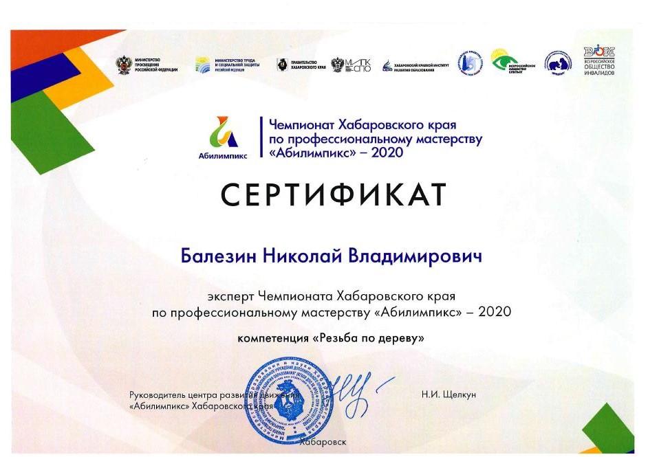 Сертификат Балезин М.С.